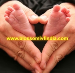 IVF at Blossom IVf in Surat, India