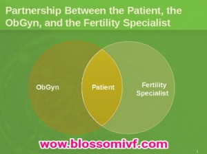 Egg, sperm and Embryo Banking Facility at Blossom IVF Surat